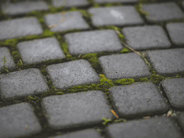 How To Control Moss & Weeds On Hard Surfaces