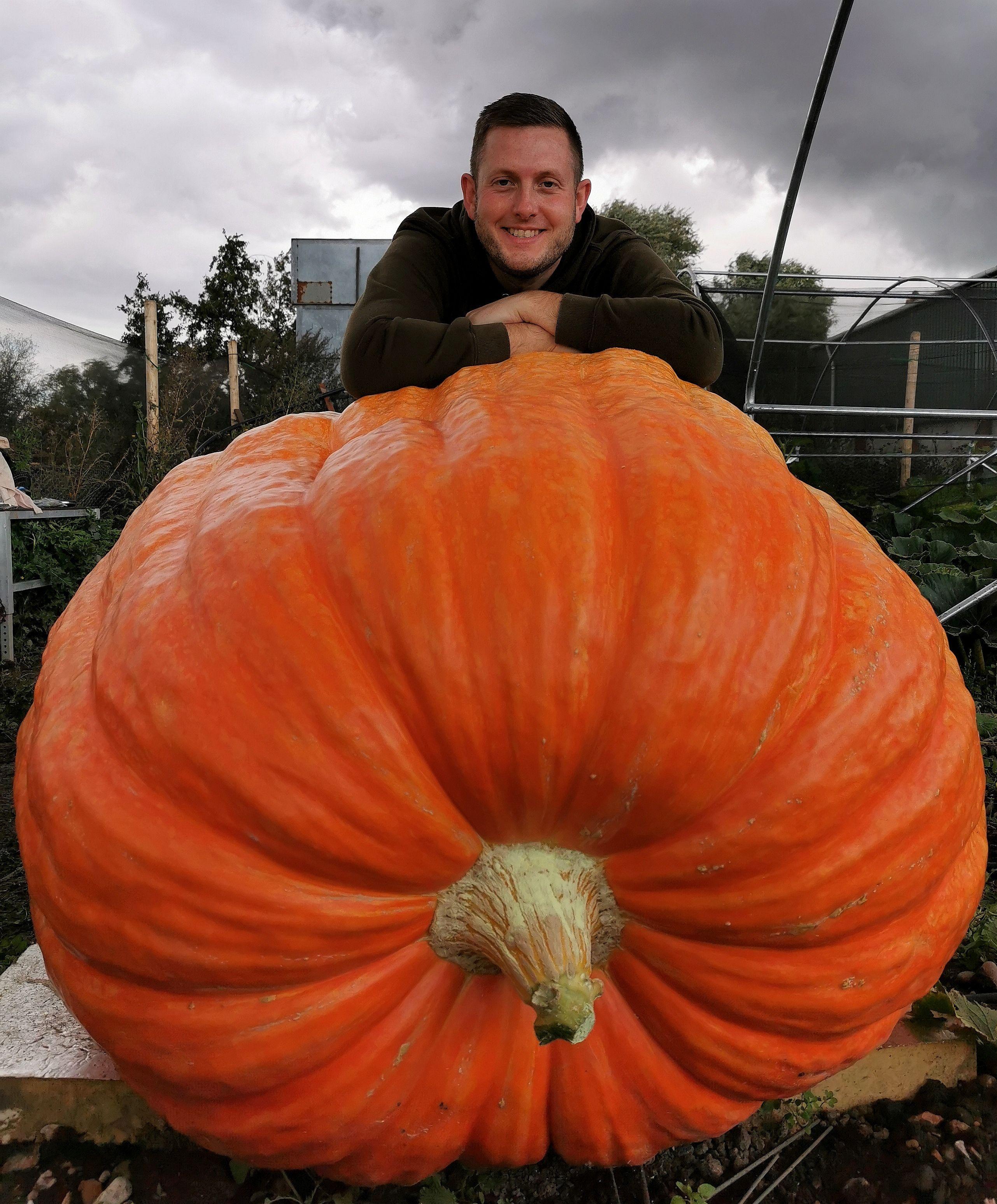 Chelsea Flower Show's Giant 758lb Pumpkin Grown Using Nutrigrow Fertiliser