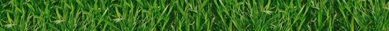 Spring Fertilisers
