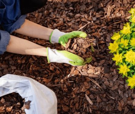 Compost, Bark & Topsoil