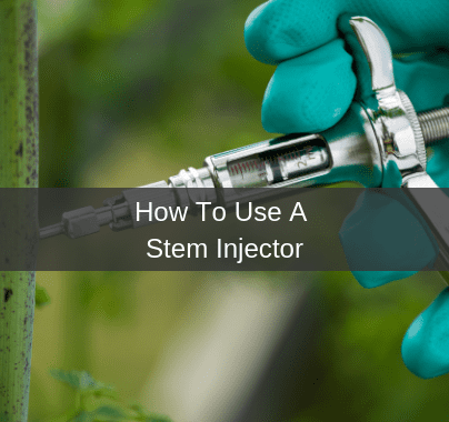 How To Use A Stem Injector