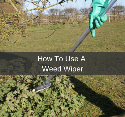 How To Use A Weed Wiper
