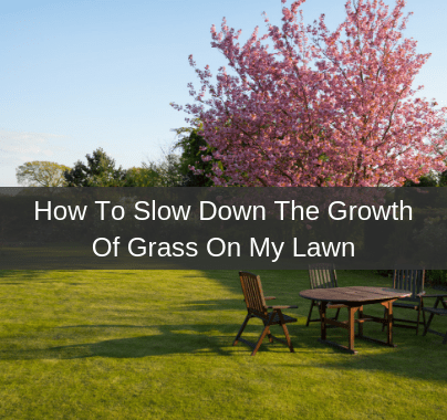 Slow Down The Growth Of Grass On My Lawn