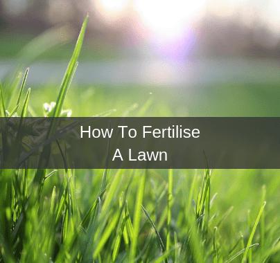 How To Fertilise A Lawn