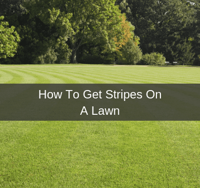 How To Get Stripes In Your Lawn