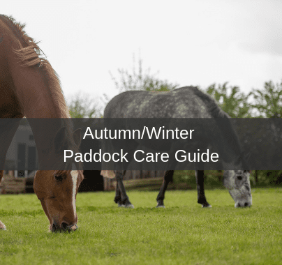 Autumn/Winter Paddock Care Guide