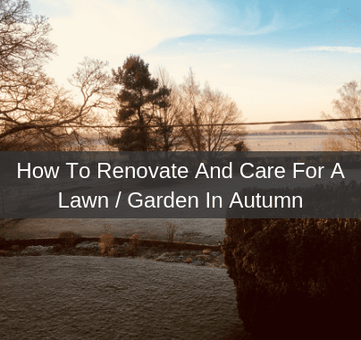 Autumn Lawn Care And Renovation