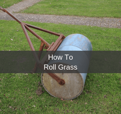 How To Roll A Lawn