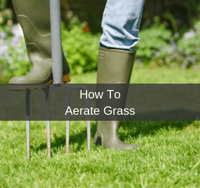 How To Aerate Grass