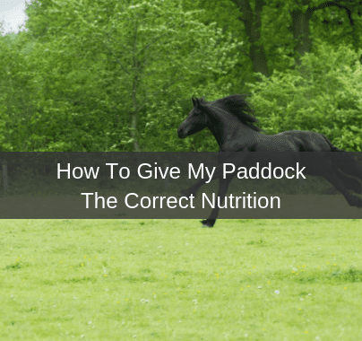 How To  Give My Paddock The Correct Nutrition