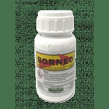 Borneo 250ml