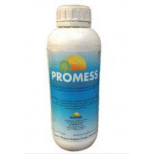Promess 1L