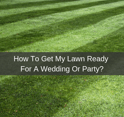 How to get my lawn ready for a wedding or party?