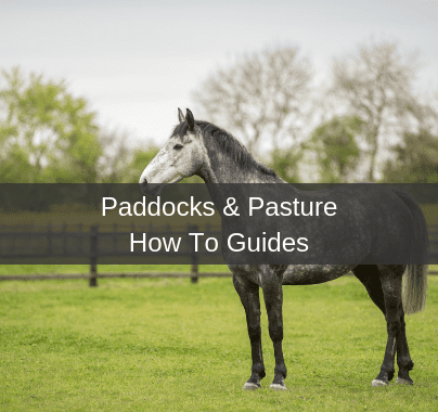 Paddock & Pasture How To Guides